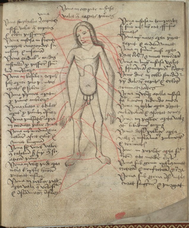 A diagram of blood letting locations on the body. Abbey of Coupar Angus, 1482