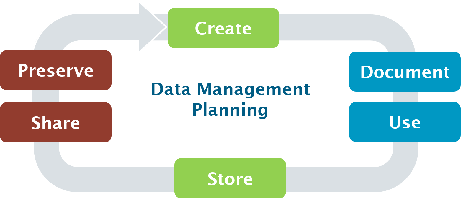 data management plan cycle