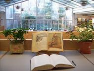 Biblioteca de Lletres's picture