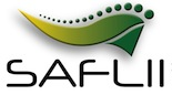 The Southern African Legal Information Institute logo