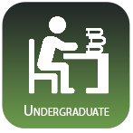 Icon link for undergraduate access