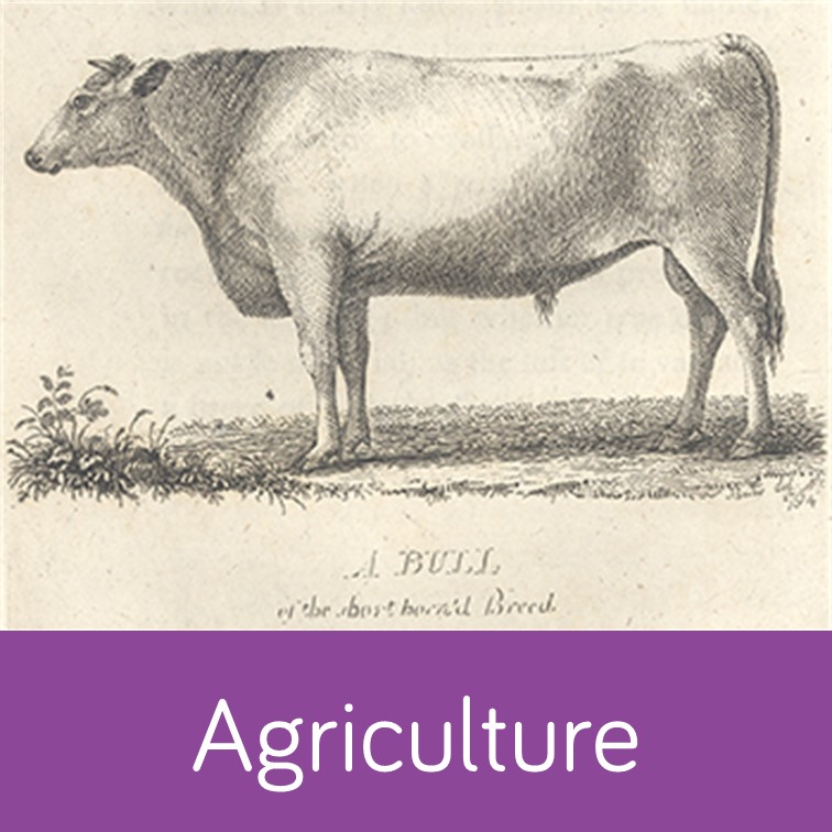 Agriculture special collections icon