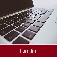 About Turnitin