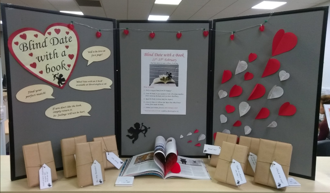 A photo of the Blind Date with a Book display at Cambridge