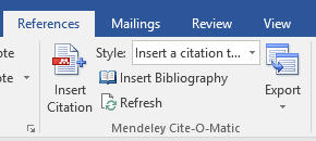 Image References tab in Microsoft Word