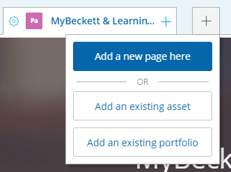 Add an existing asset