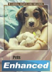 Pets Enhanced