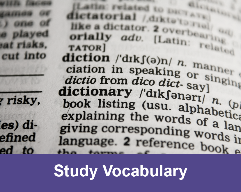 Study Vocabulary