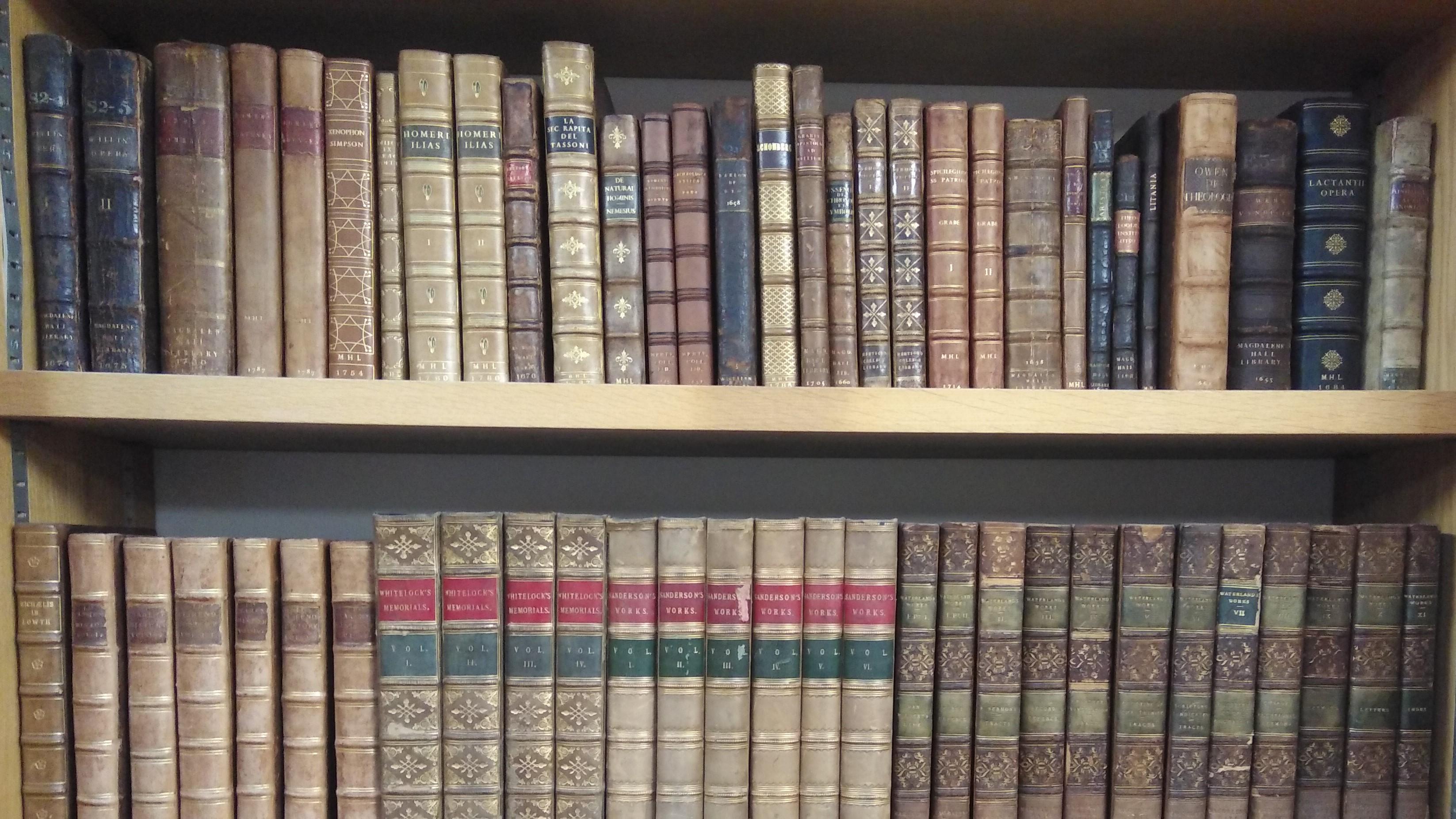 Two shelves of rare books