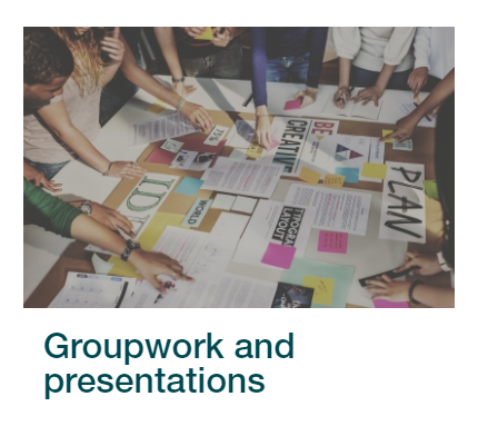Groupwork and Presentations section in Skills4Study interactive package