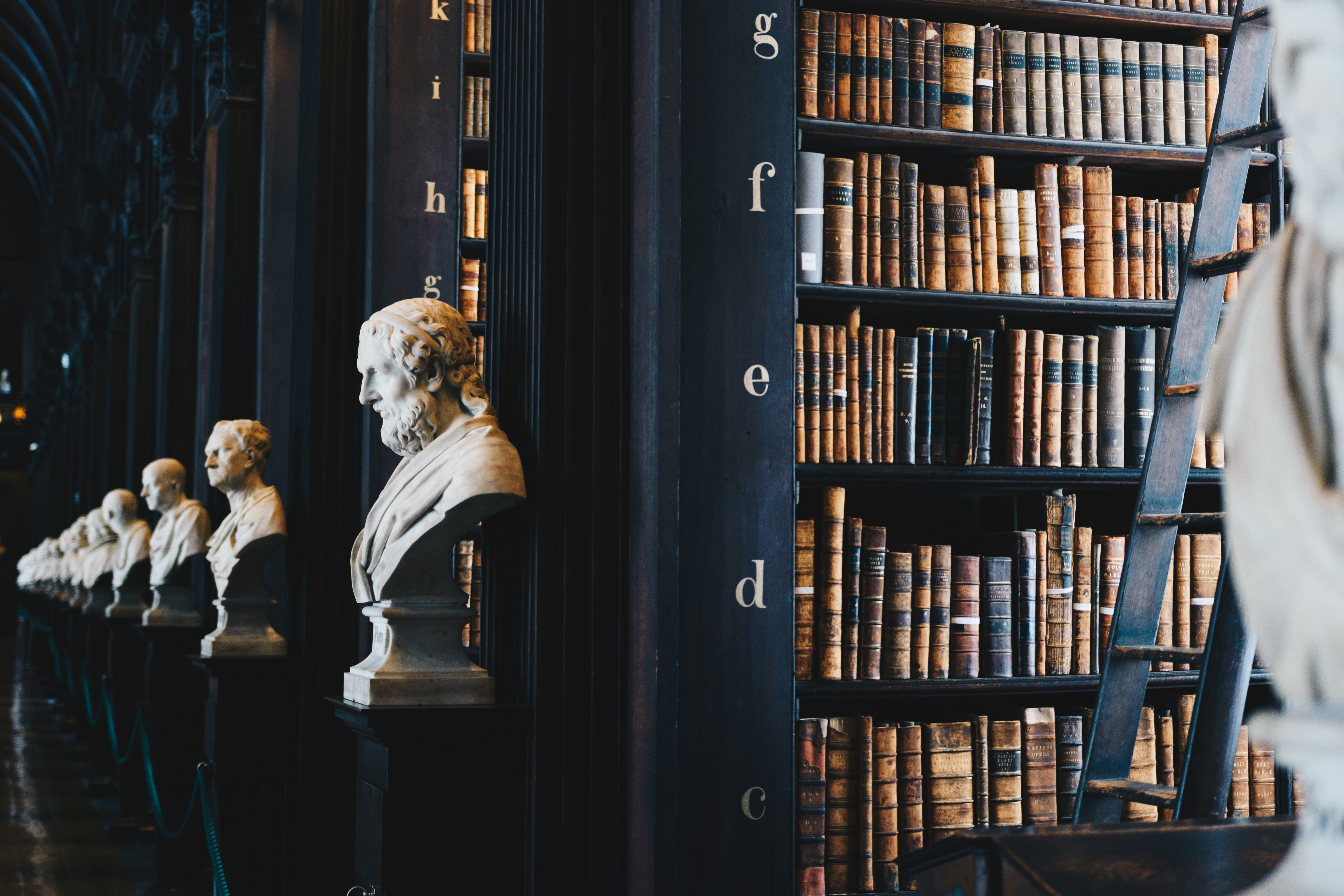 Library and head busts