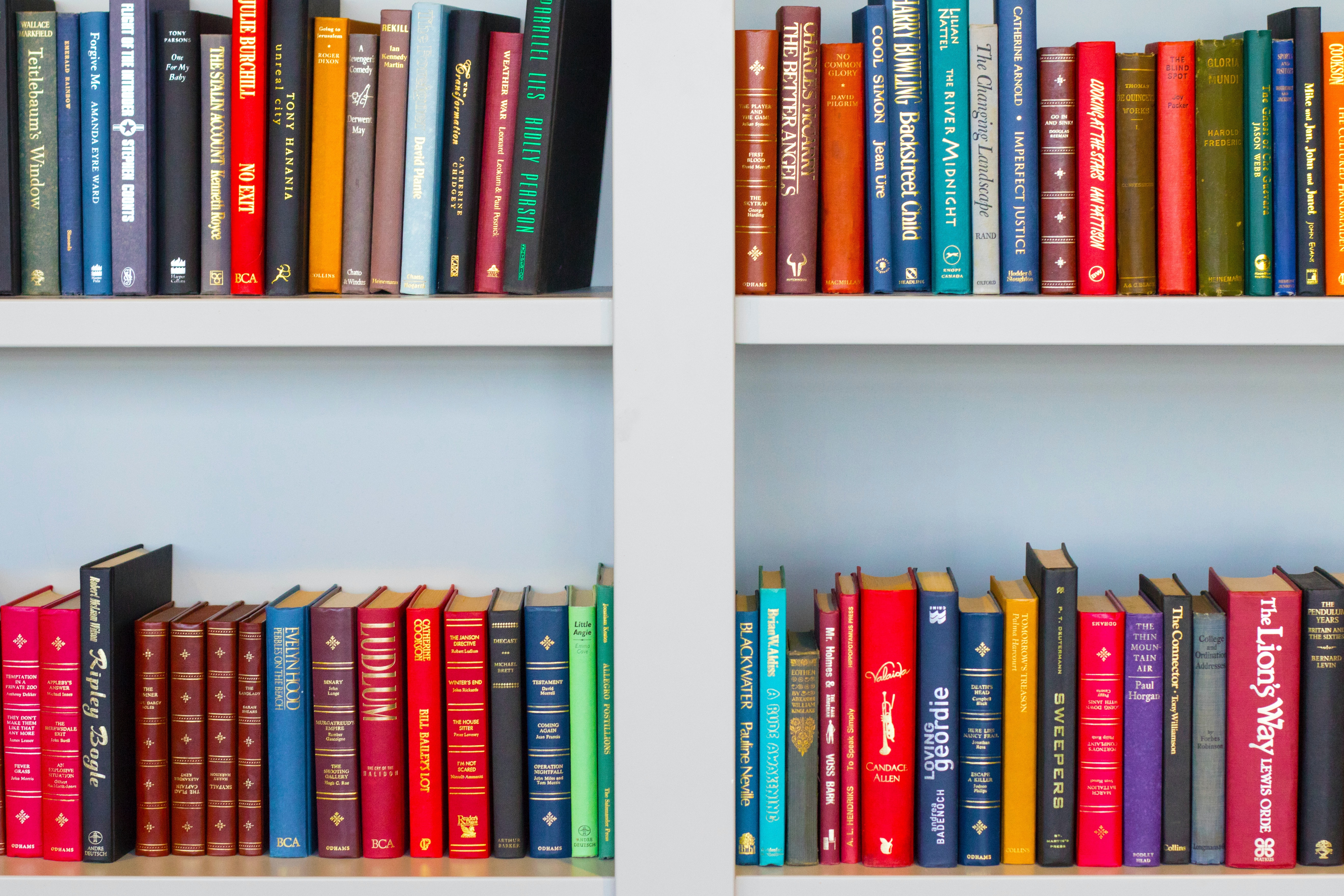 Picture of books on shelves