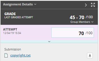 Screen-grab - Blackboard assignment details