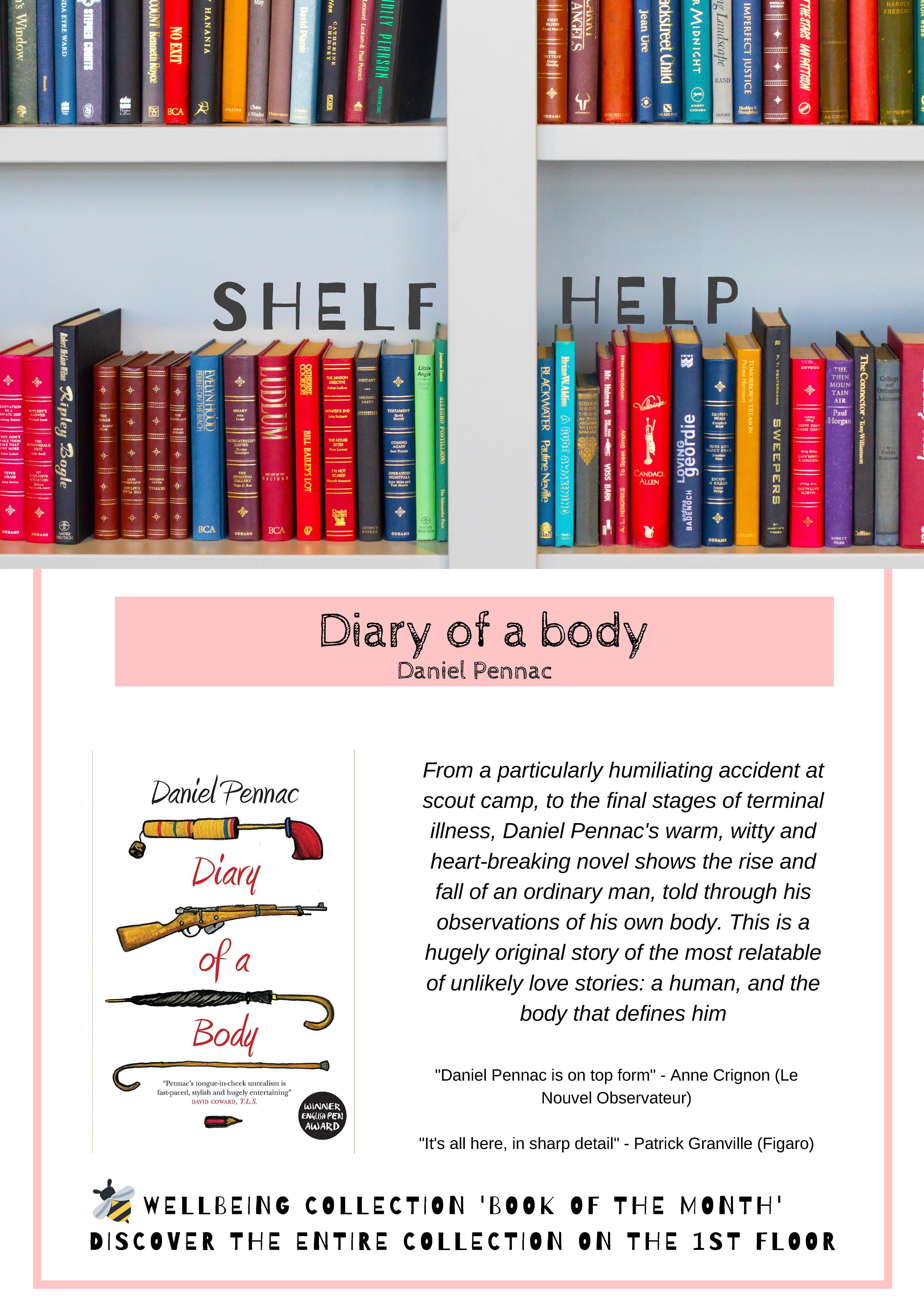 Review and photo of  book Diary of a body Daniel Pennac