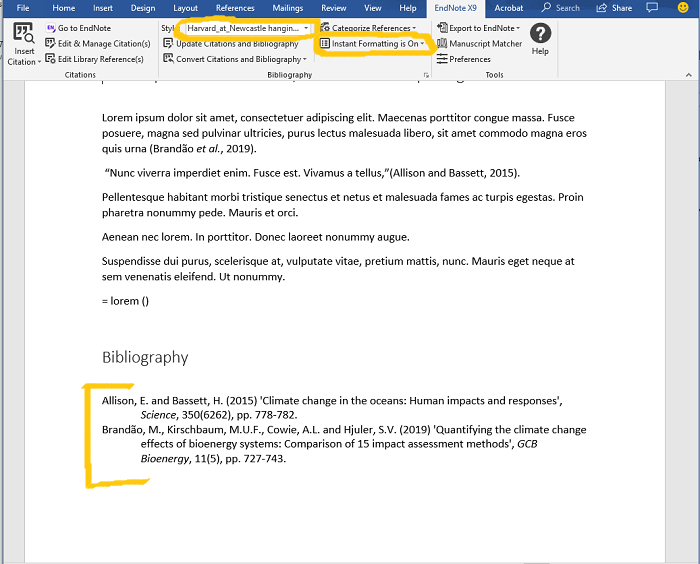 Image highlighting the instant formatting option in Endnote