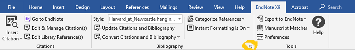 Image highlighting the bibliography menu extension
