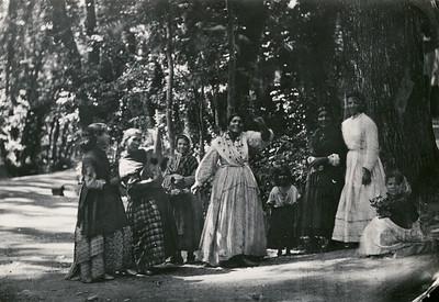 Grupp med romska kvinnor och barn i skogen