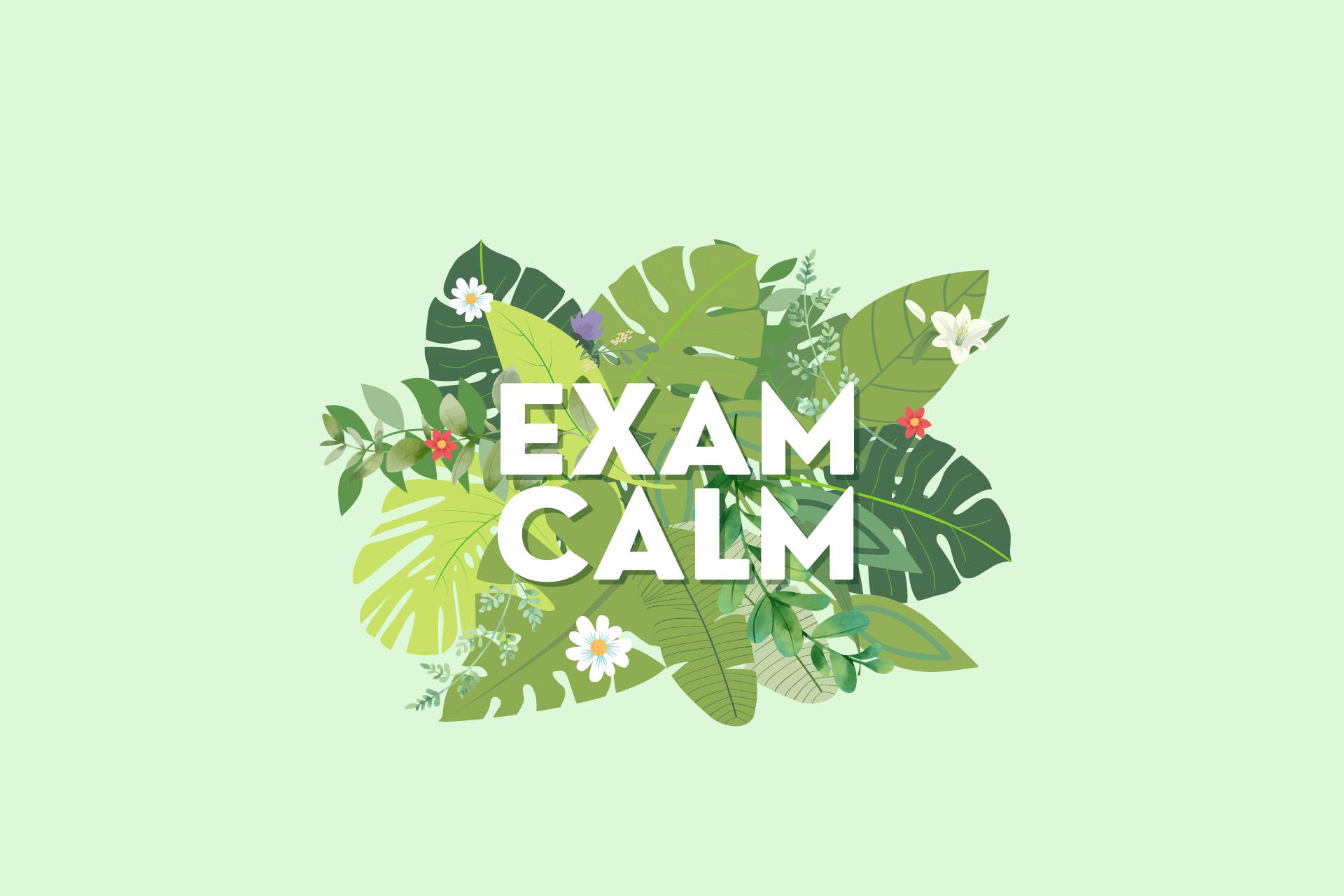 Exam Calm