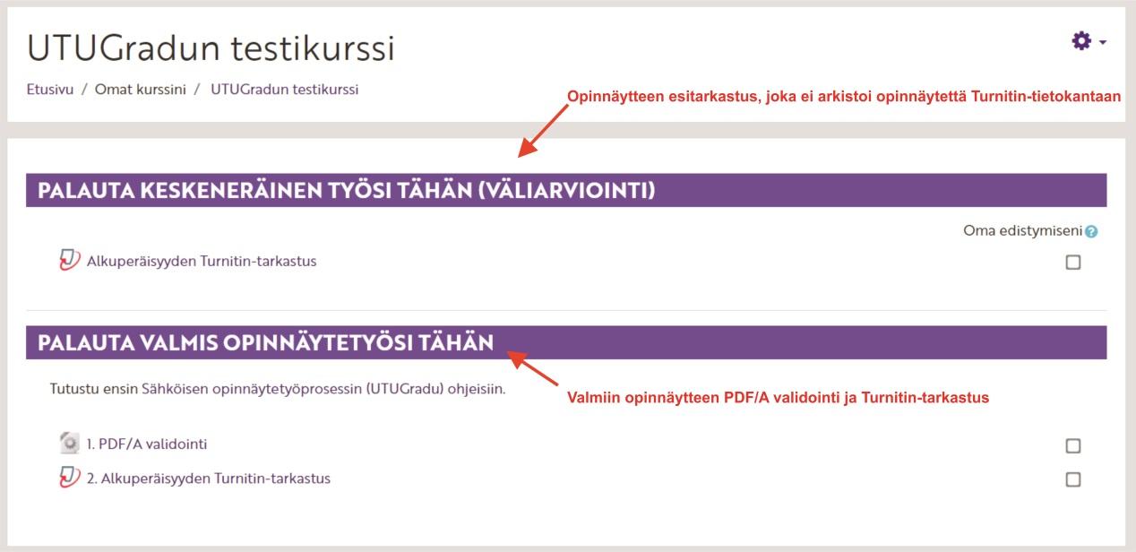 UTUGradun mukaisella Moodle-alueella on PDF/A validointi sekä kaksi Turnitin -tehtävää