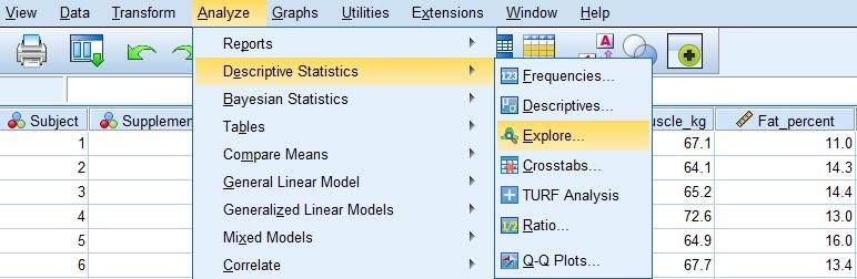 Explore menu path in SPSS