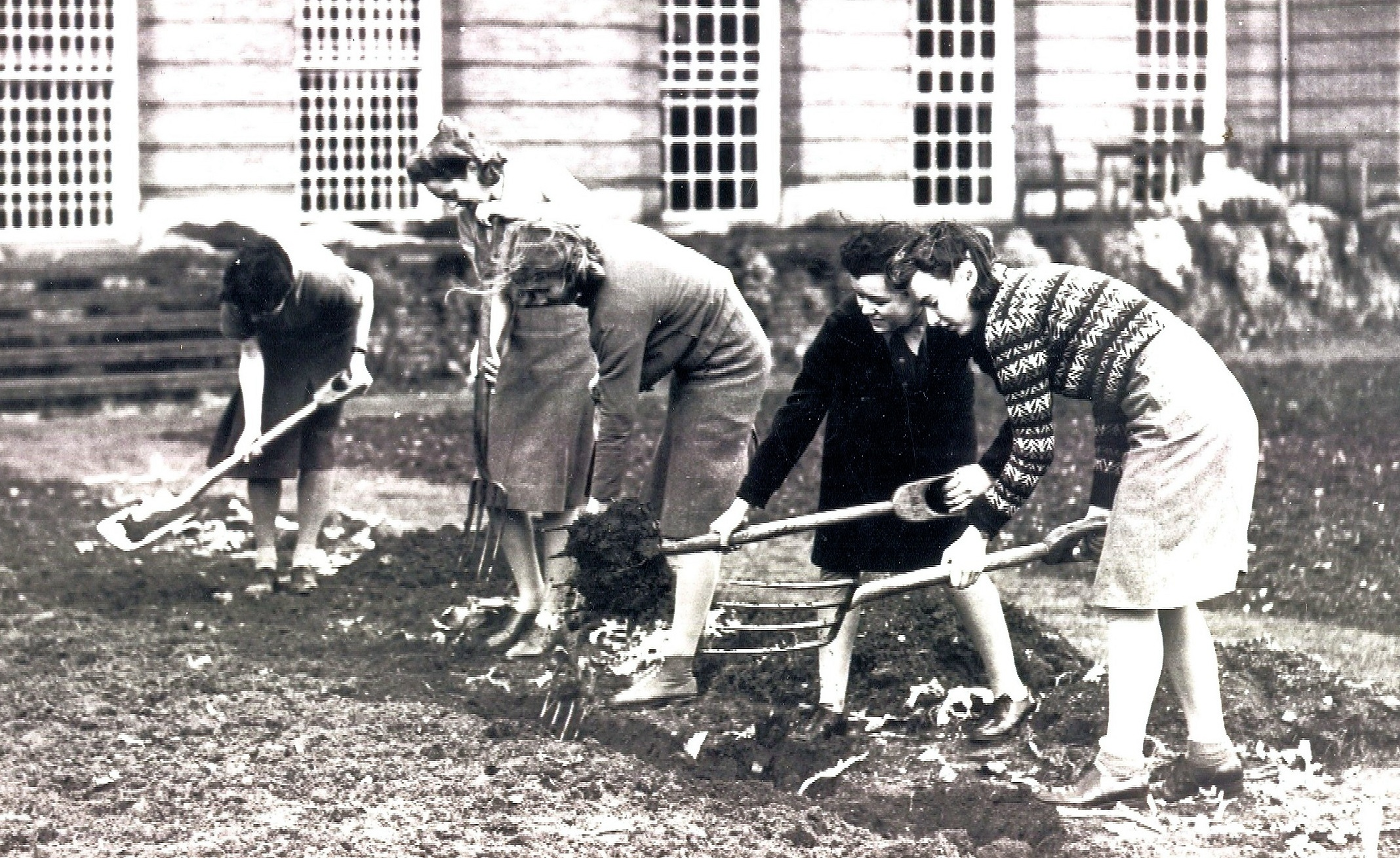 Monochrome photograph of students digging in LMH gardens.