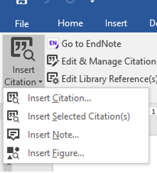 Endnote toolbar showing insert citation button options