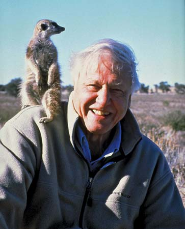 David Attenborough . image. Britannica School, Encyclopædia Britannica, 19 Feb. 2021. proxy.act.edu:2120/levels/middle/assembly/view/165932. Accessed 1 May. 2021.