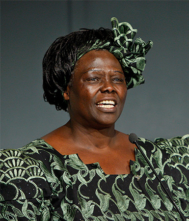 Wangari Maathai . image. Britannica School, Encyclopædia Britannica, 19 Feb. 2021. proxy.act.edu:2120/levels/middle/assembly/view/145114. Accessed 1 May. 2021.