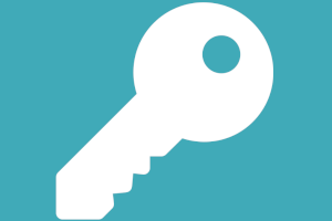 icon of a key