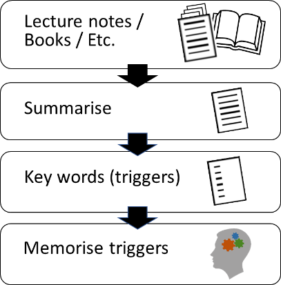 Diagram of the steps in revision