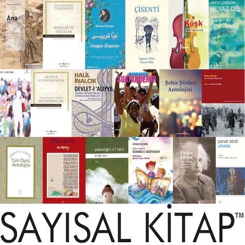 Sayısal Kitap