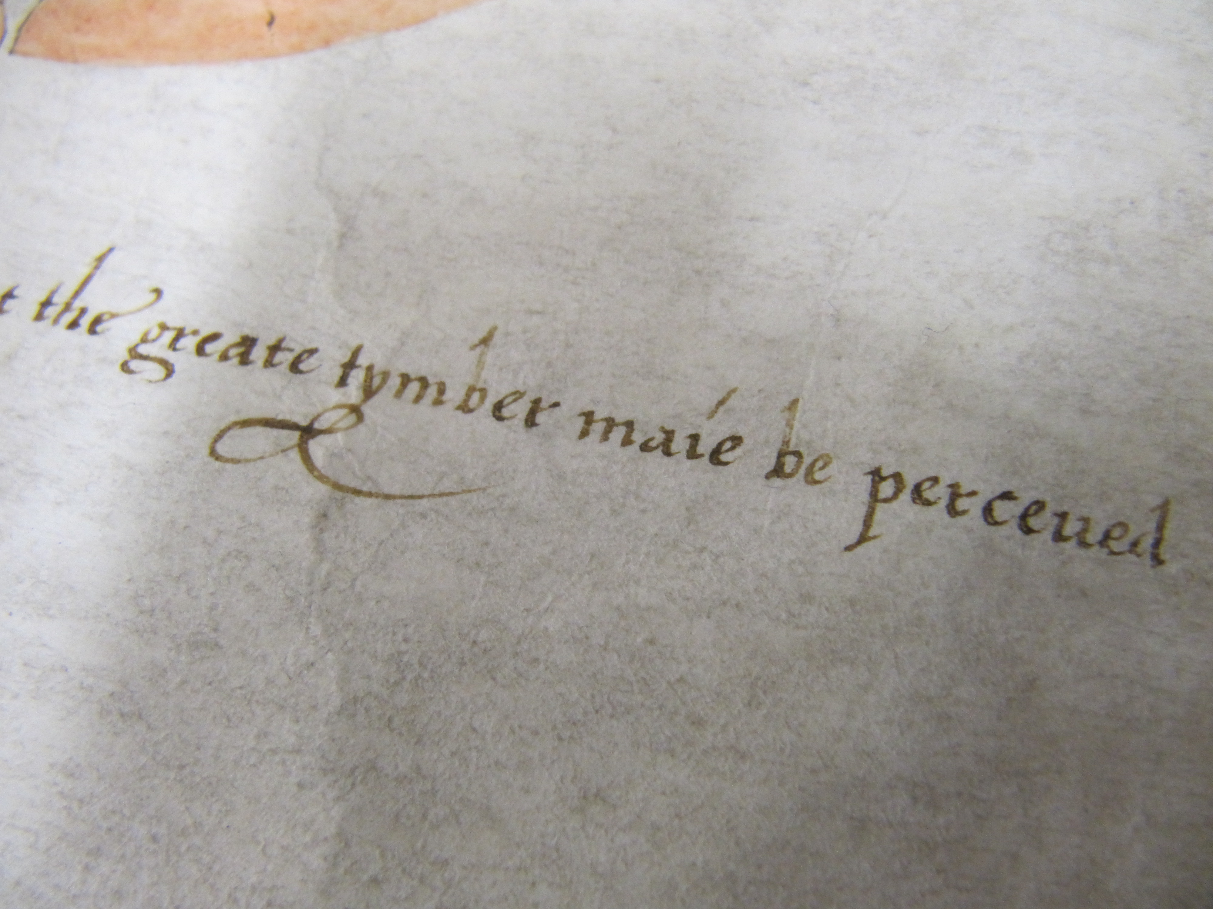 An example of 17th century spelling 'a great timber may be perceived'