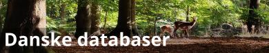 Danske databaser