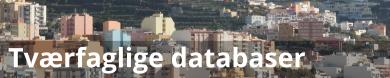 Tværfaglige databaser