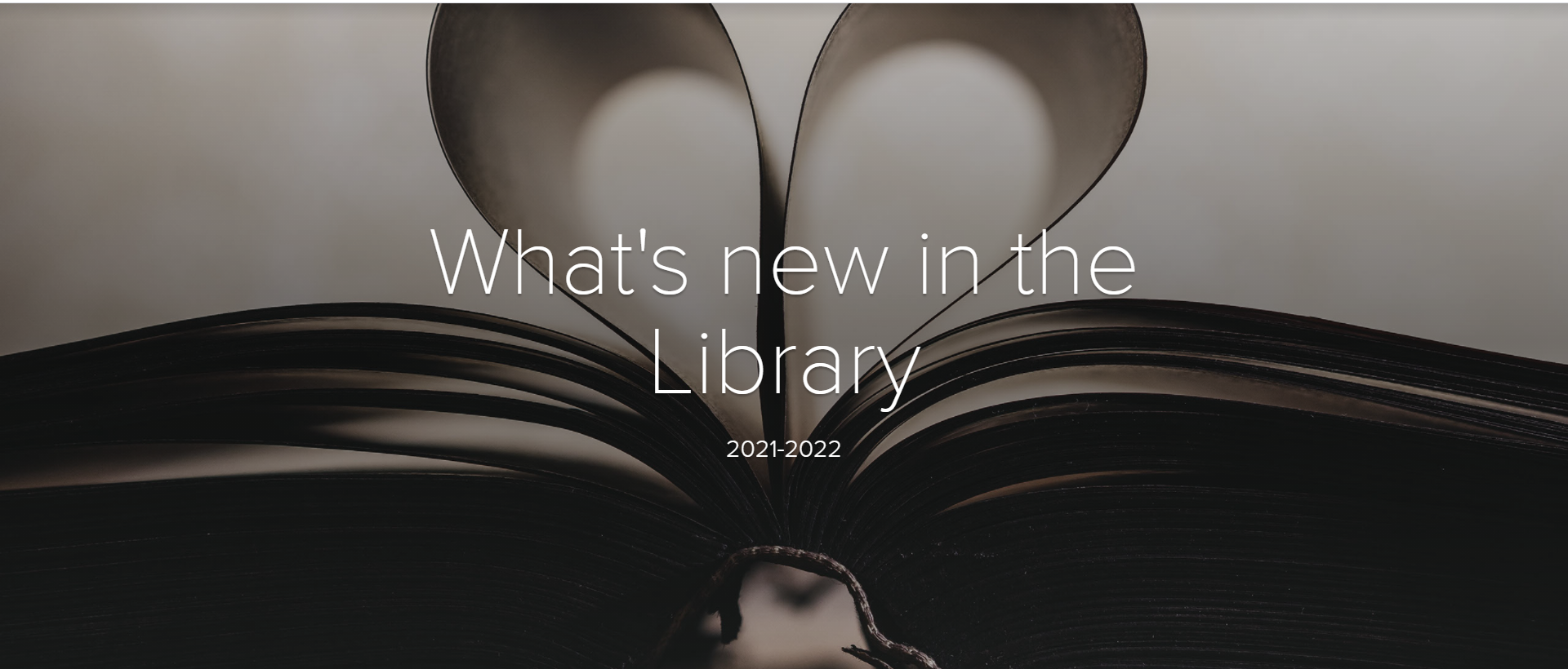 Link to What's new in the Library Adobe Spark