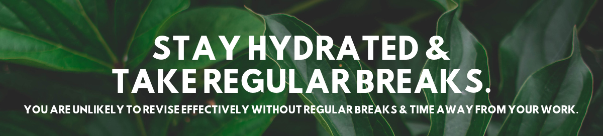 Stay hydrated and take regular breaks image