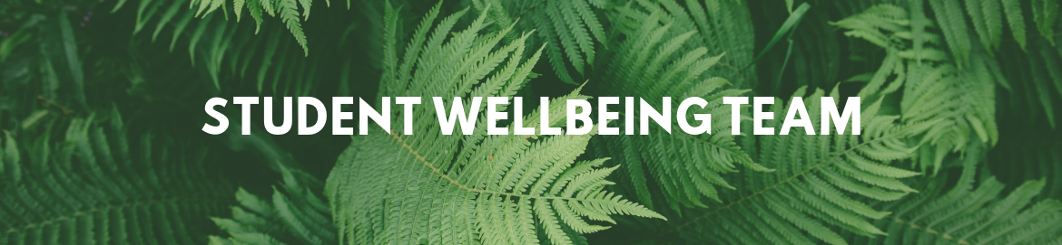 Student Wellbeing image link