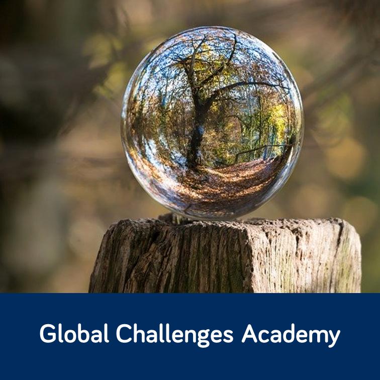 glass globe with tree inside