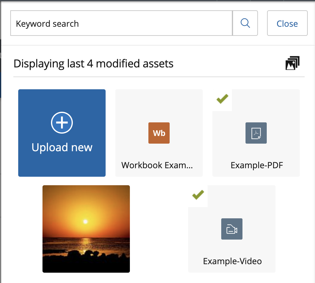 the right side panel that appears when a user clicks the add an asset button, showing all assets saved in the users asset store