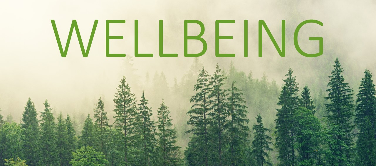 Image of trees with the word Wellbeing positioned above