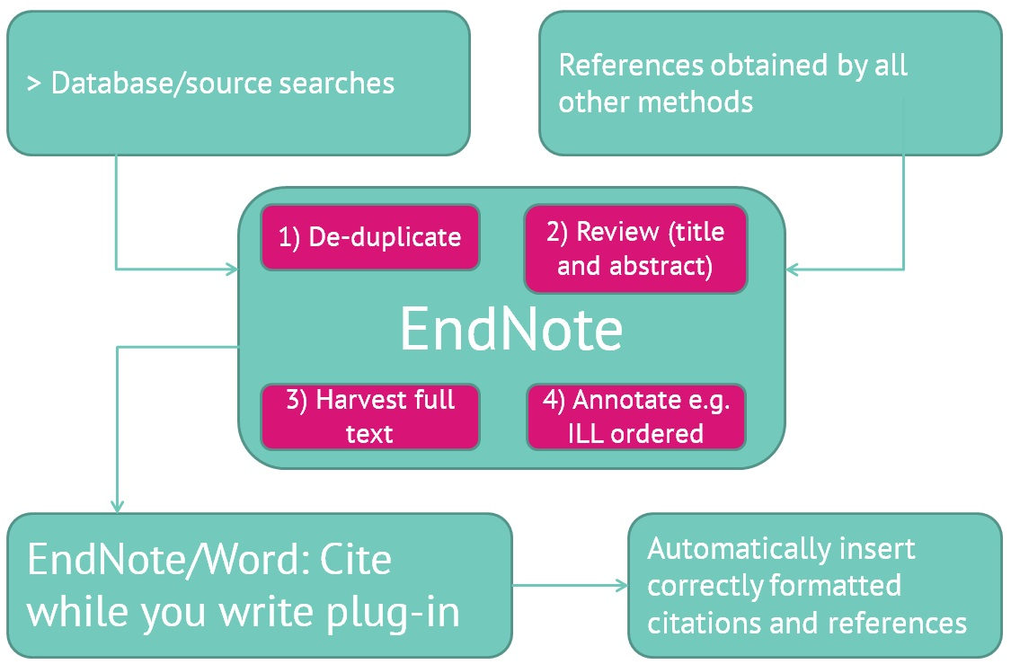 Diagram of EndNote's place within the research process