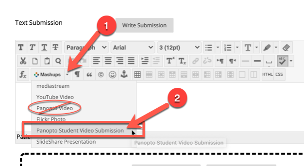 screenshot showing the mashups button and panopto student submission