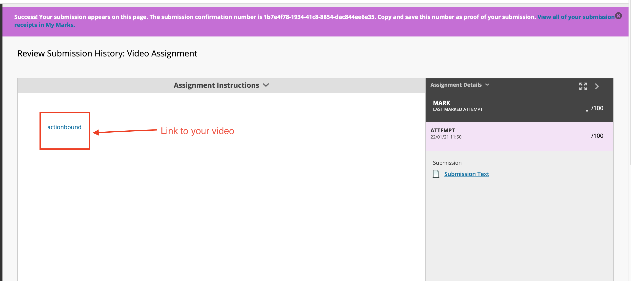 Screenshot of a successful submission with the video link highlighted
