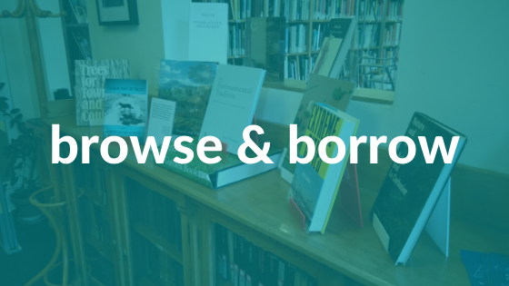 A display of library books with 'browse & borrow' text over it