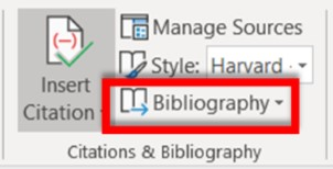 Citations & Bibliography section with Bibliography highlighted