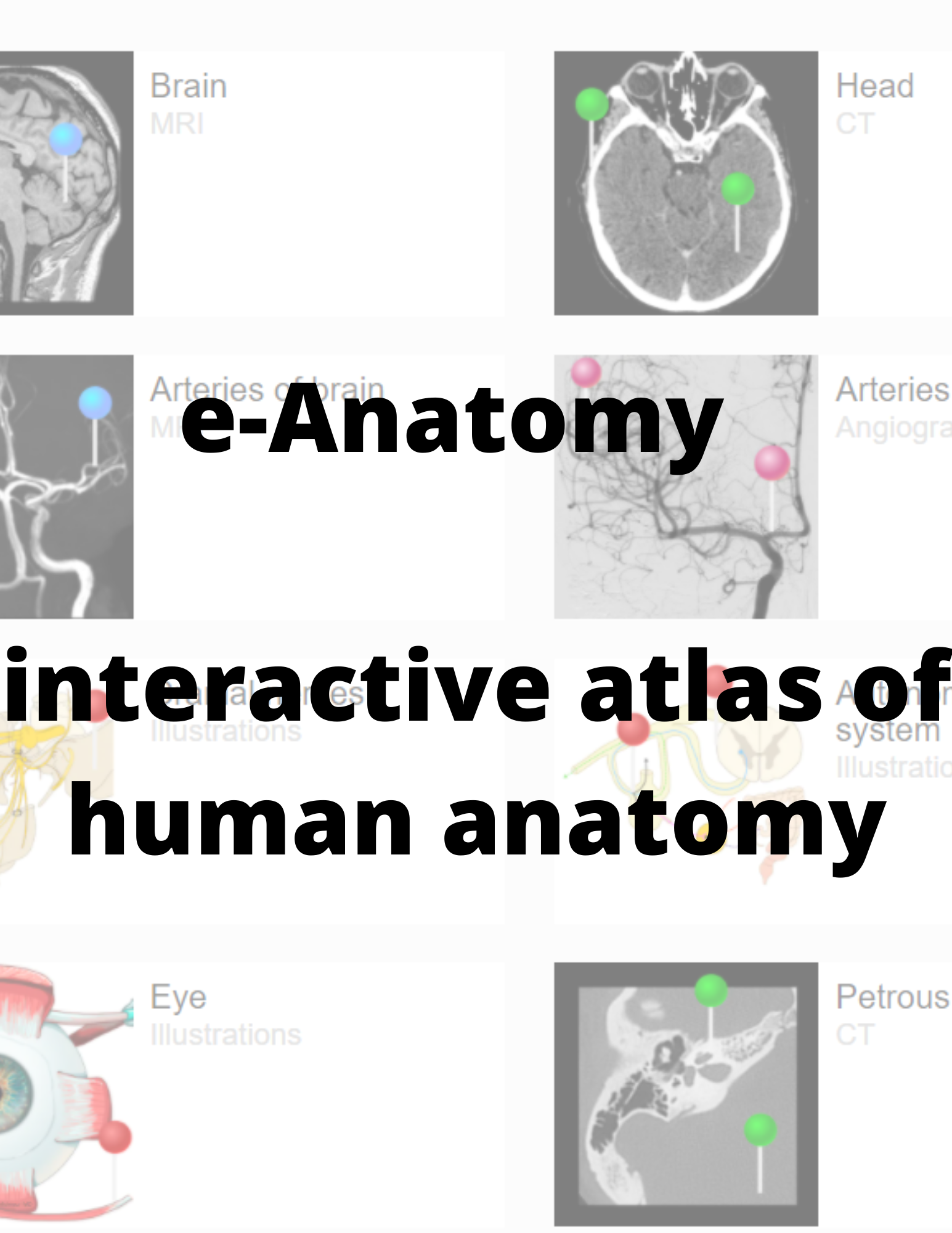 eanatomy preview