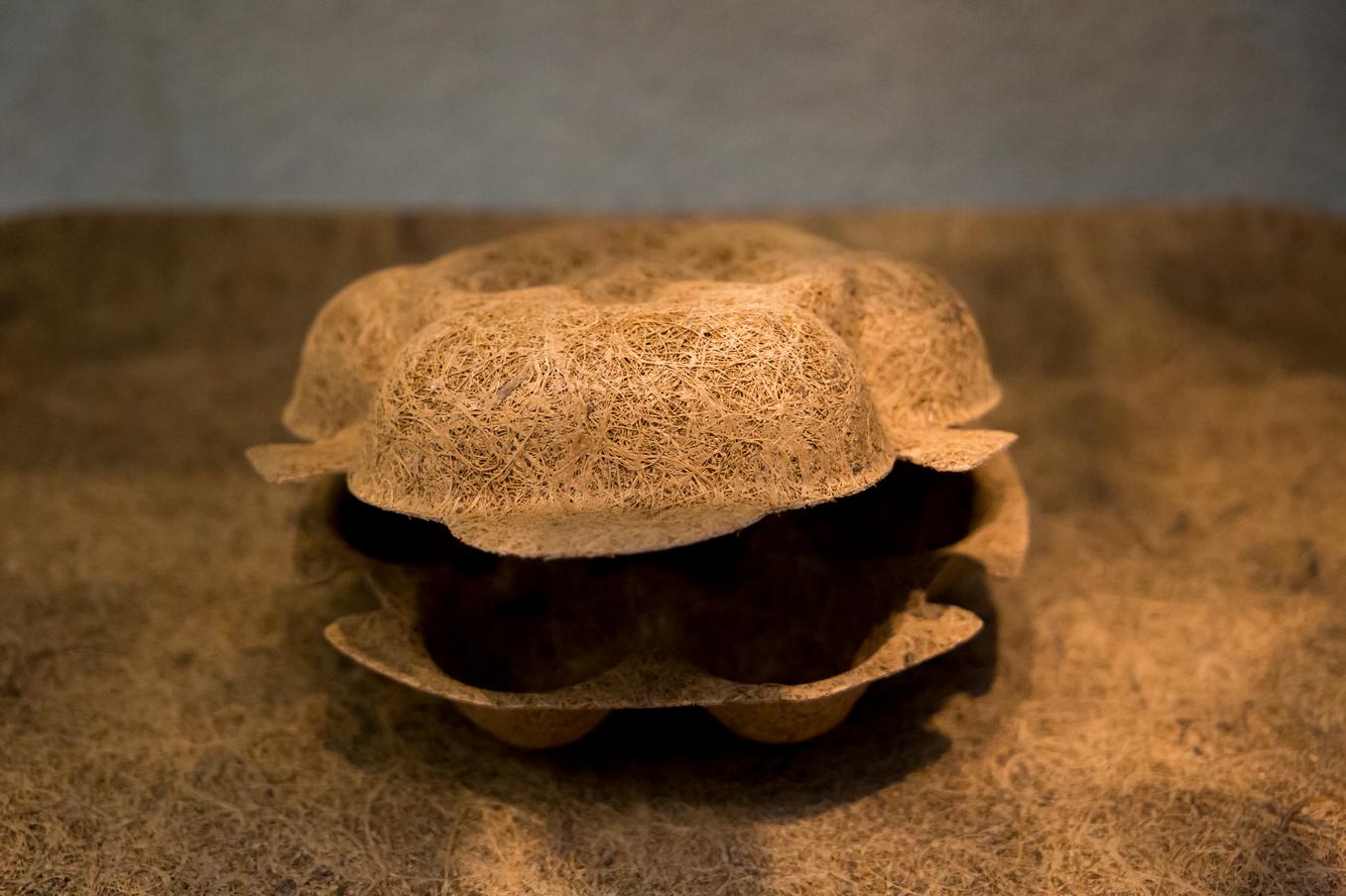Image of Cocoform egg box