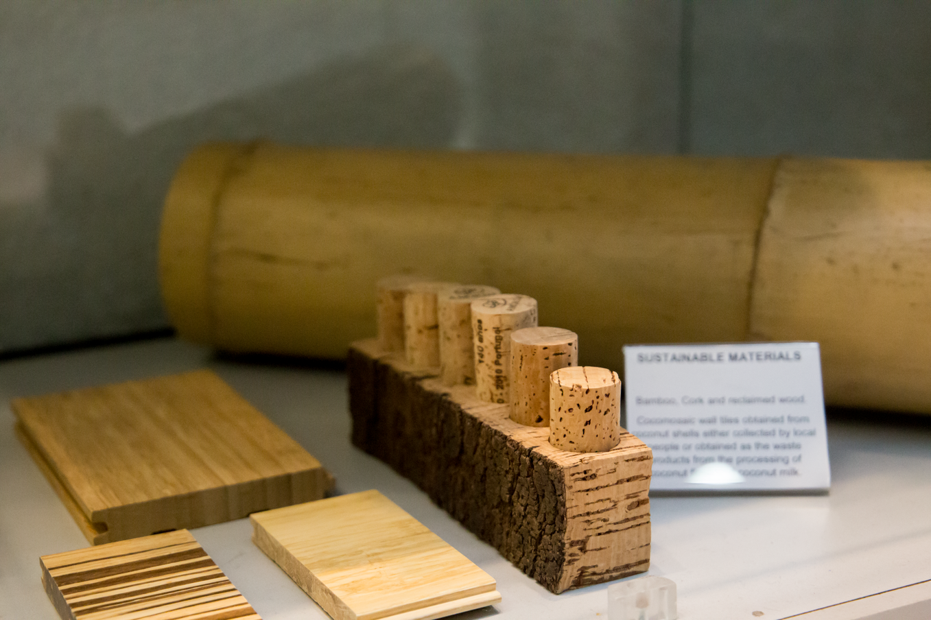 Image of Bamboo and Cork