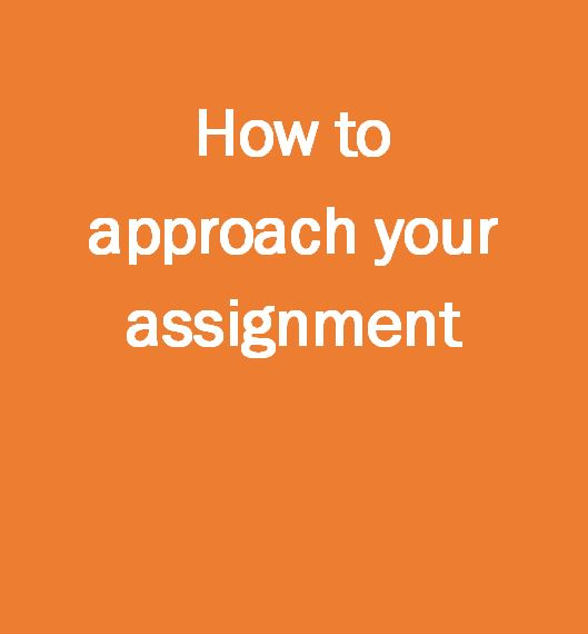 How to approach your assignment