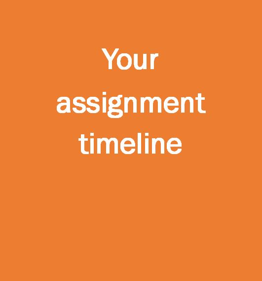 Your assignment timeline